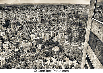 Tokyo buildings and city park, aerial view