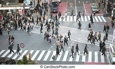 Tokyo Hachiko crossing time lapse