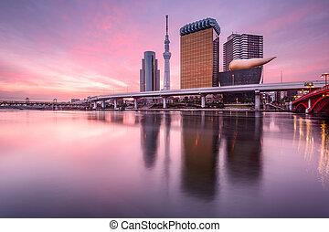 Tokyo, Japan at Dawn