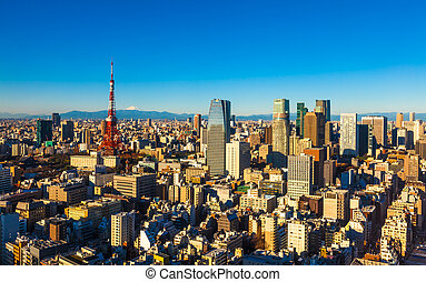 Panorama of Tokyo with the Tokyo Tower and Mt. Fuji