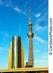Tokyo Sky Tower, Asahi Beer Hall building in Tokyo, Japan....