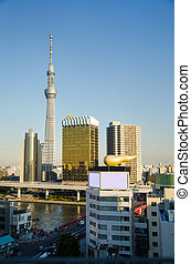 Tokyo Sky tree building in Asakusa district in Tokyo, Japan....