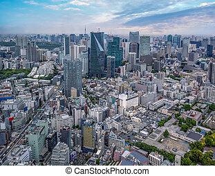 Tokyo skyline at morning