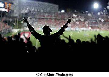 tolong, képben látható, a, stadion