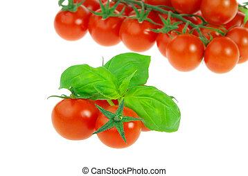 tomaat, 18, basilicum