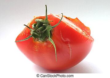 tomaat, #3, details