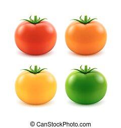 tomaat, set, groot, geel groen, sinaasappel, geheel, rood