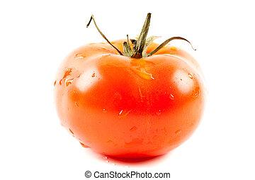 tomat, isolerat, vita, bakgrund