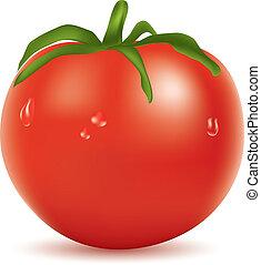 tomate, agua, vector, gotas