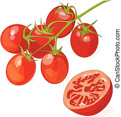 tomate, blanc, isolé, fond