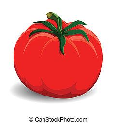 tomate, branco vermelho, fundo