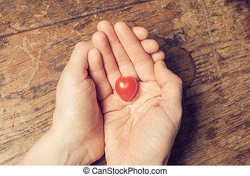 tomate, coeur, mains, tenue, formé