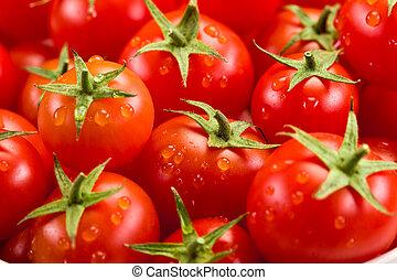 tomate, fundo