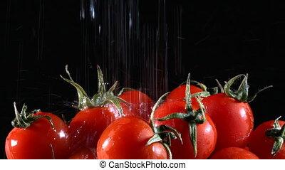 tomate, légume, organique