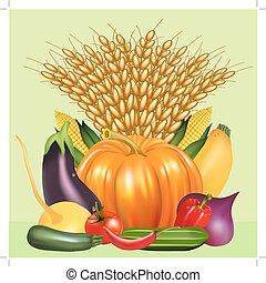 tomate, legumes, pepino, orelha, colheita, abóbora