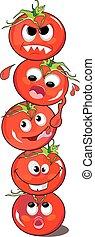 tomate, ou, solanum, lycopersicum, ilustração
