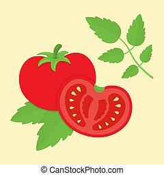 tomate, plat, style, illustration, vecteur, dessin animé