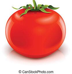 tomate, rojo, maduro