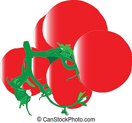 tomate, vecteur, -