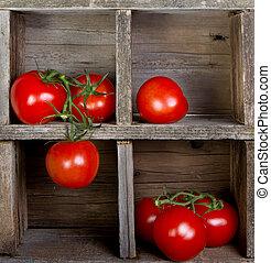 tomaten, in, een, ?????? ????ß?