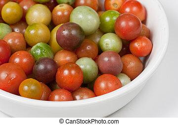 tomates, wiśnia, scheda