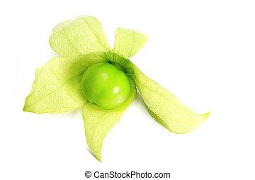 Tomatillo,  (physalis,  philadelphica)