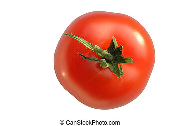 Tomato – white background