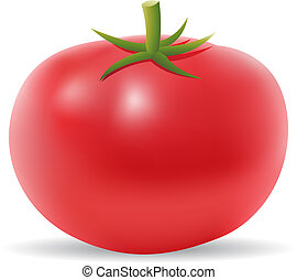 3d tomato isolated on white