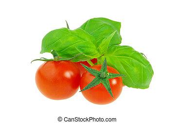 tomato and basil 19