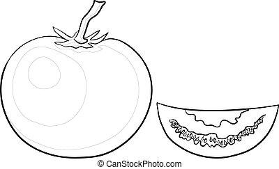 Tomato and segment, contours - Vector, vegetable, tomato and...