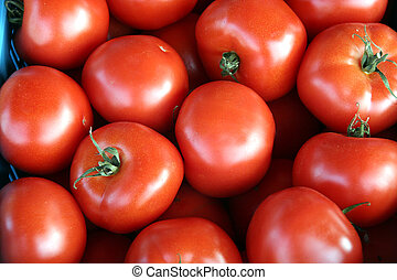 tomato background - Background of tomatoes