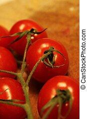 tomato branch