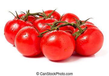 Tomato branch with water droplets isolated on white background