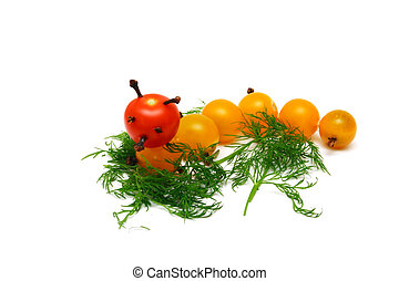 tomato caterpillar with a fennel