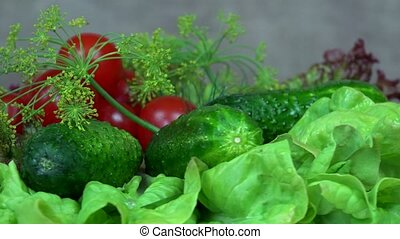 Tomato, cucumber, lettuce and dill vegetables. turntable -...