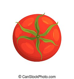 Tomato. Fresh healthy red tomato made in flat style. Single tomato. Vegetarian food. Vegetable from the farm. Organic food. Vector illustration of tomato