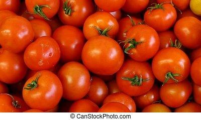 tomato - fresh vegetables