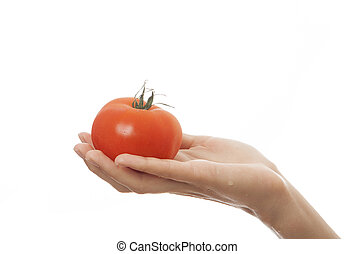 tomato in hand, isolated on white background