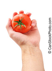 Tomato in hand