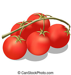 Tomato on a branch.