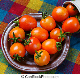 Vietnam agricultural product, closeup of fresh tomato in red, tomatos is nutrition, organic fruit, rich vitamin, carotene, lycopene, healthy food, frequently used can prevent breast cancer risk
