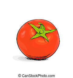 Tomato - red tomato on white backgound