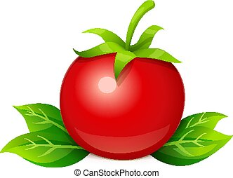 Tomato. Ripe vegetable with leaf. Vector illustration.