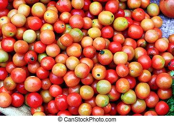 tomato stack