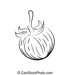 Tomato vector drawing