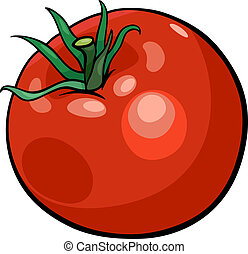 tomato vegetable cartoon illustration