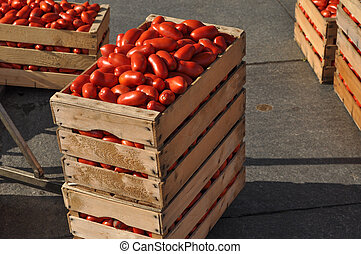 Tomato vegetables in a crate