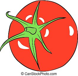 tomato whole on white background of vector illustrations