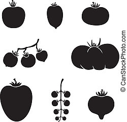 Tomatoes - A set of images of different varieties of ...