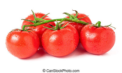 tomatoes branch isolated on a white background closeup